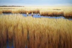 Marsh Horizon, 34x46