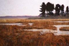 Quiet Marsh
